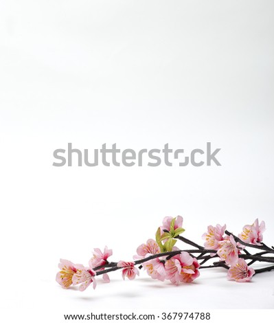 Pink Cherry blossom, sakura flowers isolated on white background, fake¸ Flowers made from fabric - stock photo