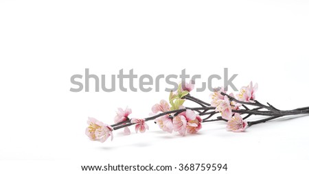 Pink Cherry blossom, sakura flowers isolated on white background, fake, Flowers made from fabric - stock photo