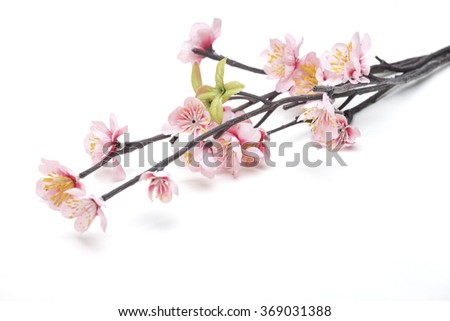 Pink Cherry blossom, sakura flowers isolated on white background, fake,Flowers made from fabric - stock photo