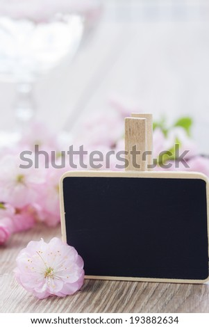 pink  cherry flowers with copy space on black chalk board