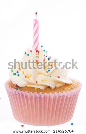 Pink Cupcake and white frosting - stock photo