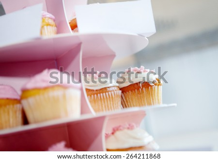 Pink cupcakes and chocolate with whipped cream in cupcake stand - stock photo