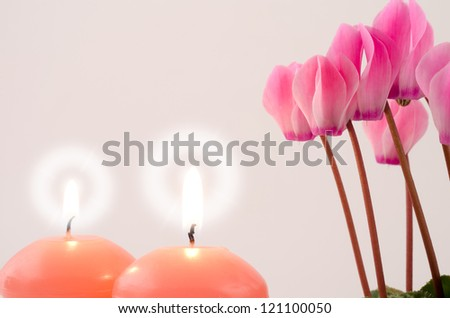Pink cyclamen flowers and candle light on gray - stock photo