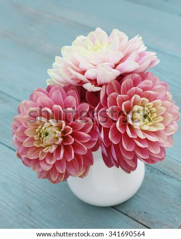 Pink dahlias in white jug on old blue wooden background - stock photo
