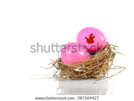 Pink egg,Nests,broken egg isolated on white background.For Easter day or other.