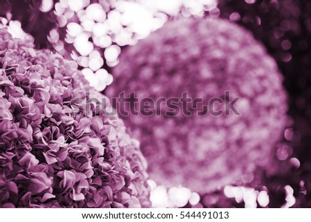 Pink Flower Globes Decoration in Natural Conservatory Setting