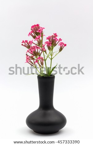 Pink Flower Vase Black On White Stock Photo Edit Now 457333390