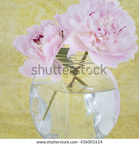 Pink Flowers in a glass vase, isolated against yellow - stock photo