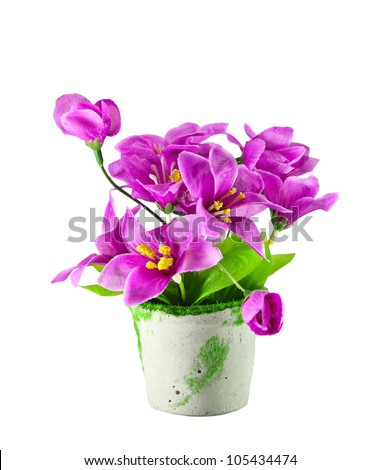 pink flowers, isolated on white - stock photo