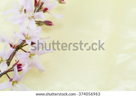 Pink flowers on yellow fabric texture background