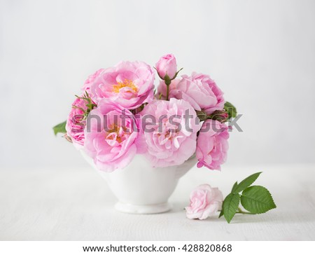 Pink flowers (rose) on light grey  background. - stock photo