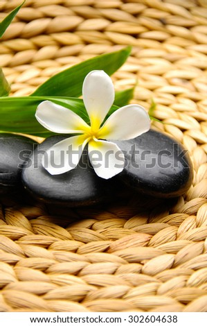 Pink frangipani and bamboo ,stones on Wicker placemat - stock photo