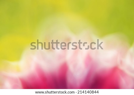 pink-green background      - stock photo