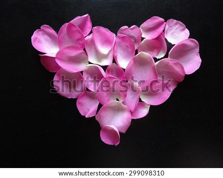 pink heart made of rose petals on a black background  - stock photo