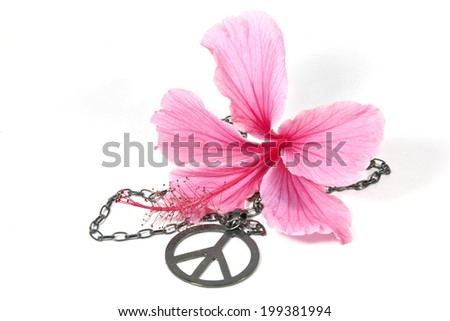 pink hibiscus flower with silver peace pendant as symbol of 1960's flower power - stock photo