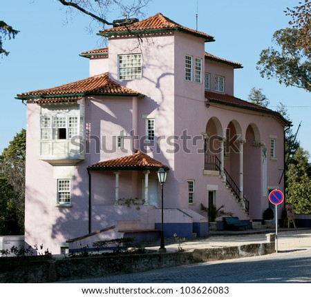 Pink house and the shadow of the branches on the wall in the Bussaco Palace - Portugal