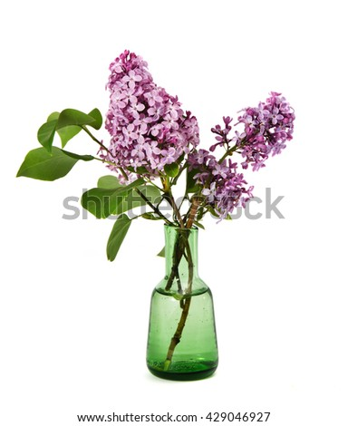 Pink lilac bouquet in a vase isolated on white background