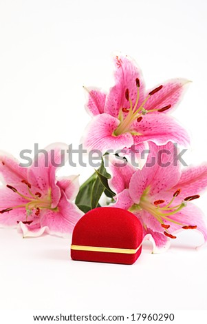 pink lily and gift on a white background