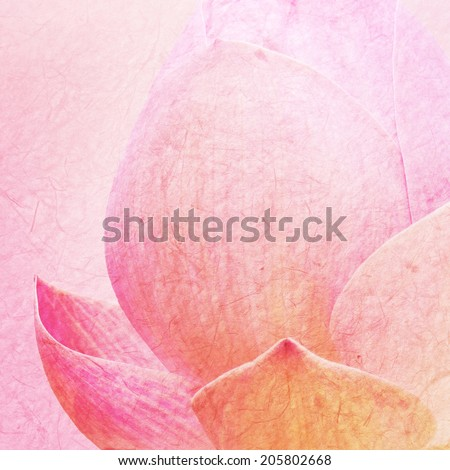 Pink Lotus on mulberry paper texture - stock photo