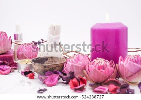 Pink Lotus Spa in Purple Concept