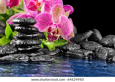 Pink orchid and and stones in the water - stock photo