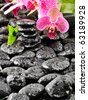 Pink orchid and stones - stock photo