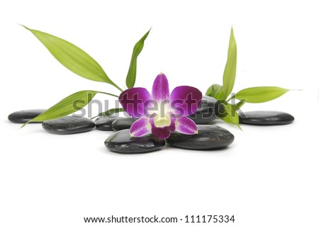 pink orchid and zen stones with bamboo leaf - stock photo