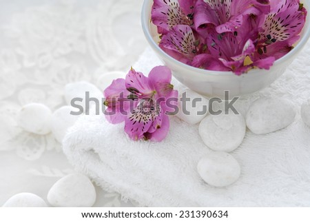 Pink orchid in bowl with white stones and white lace  - stock photo
