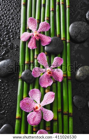 Pink orchid with stones on bamboo grove-wet background  - stock photo