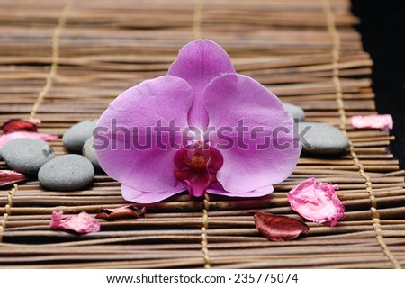 pink orchid with stones ,petals on mat - stock photo