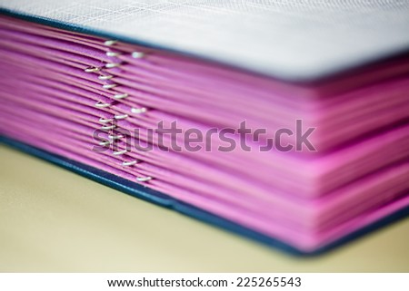 Pink paper file and clips