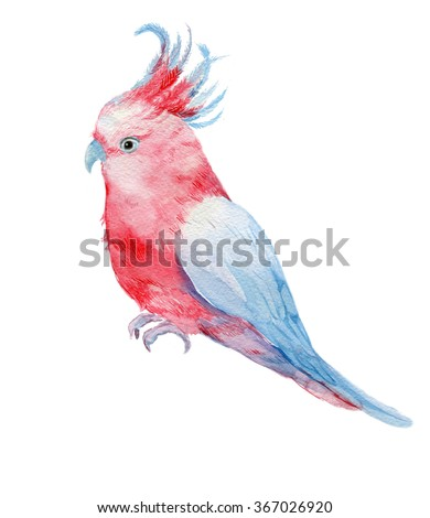 pink parrot cockatoo .illustration watercolor - stock photo