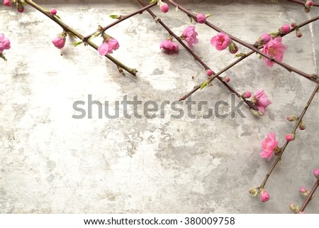 Pink peach blossoms on the silver background. - stock photo