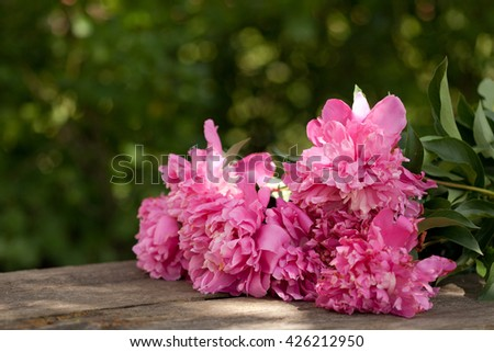 Pink peonies bouquet outdoor