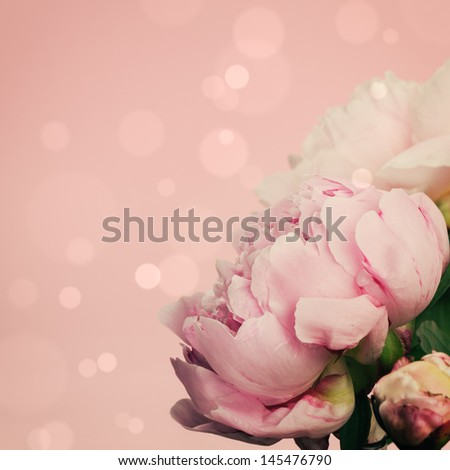 Pink peonies on pastel background with copyspace - stock photo