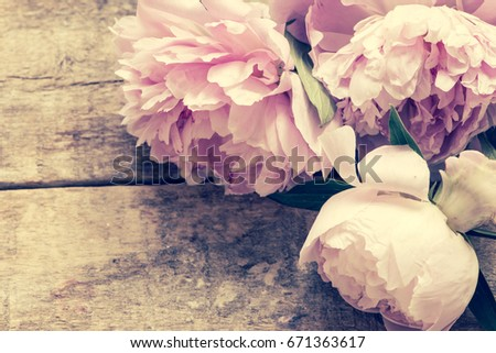 Pink peony flowers on a wooden background/toned photo