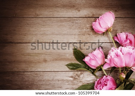 pink peony on wooden background - stock photo