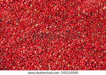 Pink pepper background. - stock photo
