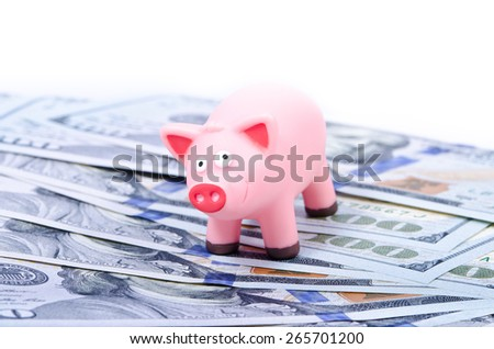 Pink pig on the new 100 dollar bills, over white - stock photo