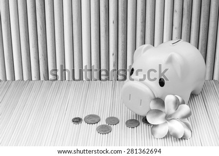 pink piggy bank and coin on round wooden wall background  in black and white tone - stock photo