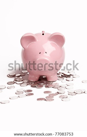Pink Piggy Bank on isolated on white background with coins