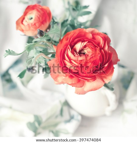 Pink ranunculus in vase, beautiful spring flower, overview. Natural light photo. Toned photo. Shallow focus. Spring time and romance concept. - stock photo