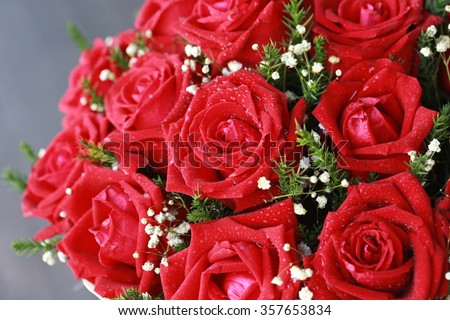 pink red rose bouquet ,Bouquet of fresh roses flower bright background. - stock photo