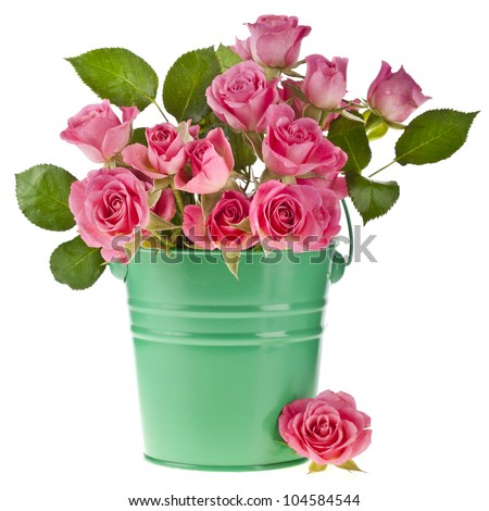 pink rose bouquet in a green bucket isolated on white background - stock photo