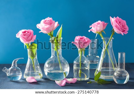 pink rose flowers in chemical flasks over blue - stock photo