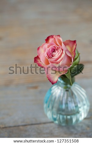 Pink rose in vase on wooden background - stock photo