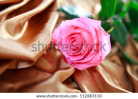 Pink rose on silk sheets