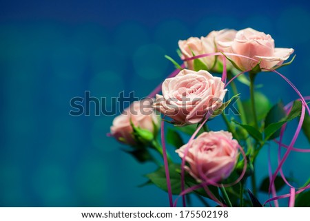 Pink rose with turquoise and blue circle blurry background - stock photo