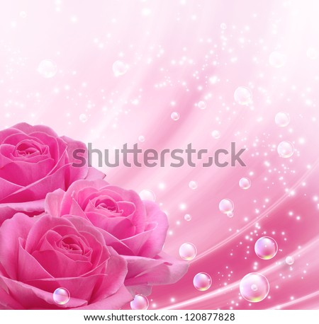 Pink roses and bubbles - stock photo