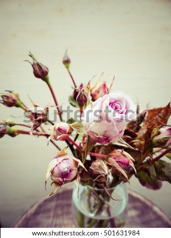 pink roses bouquet, selective focus and toned image